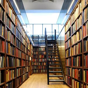 Библиотеки Богучара